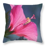 Pink, Blue And Green Throw Pillow