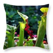 Sarracenia Flava Throw Pillow