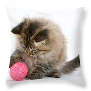 Playful Kitten Throw Pillow