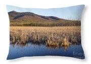 Pondicherry Wildlife Refuge - Jefferson New Hampshire Throw Pillow