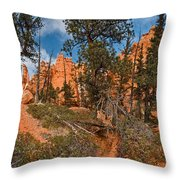 Queen's Garden Throw Pillow