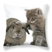 Rabbit And Kitten Throw Pillow