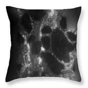 Radiation From Uranium Ore Conglomerate Throw Pillow