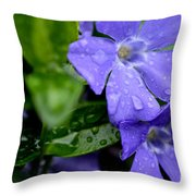 Raindrops On Sorcerers Violet Throw Pillow