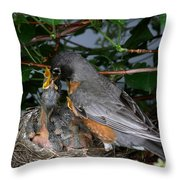 Robin Feeding Its Young Throw Pillow by Ted Kinsman