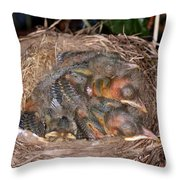 Robin Nestlings Throw Pillow