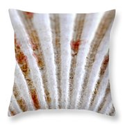 Seashell Surface Throw Pillow by Elena Elisseeva