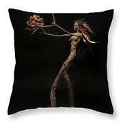 Seventh Year Prophecy Throw Pillow