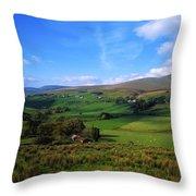 Sperrin Mountains, Co Tyrone, Ireland Throw Pillow