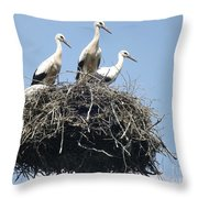 3 Storks In The Nest. Lithuania Throw Pillow