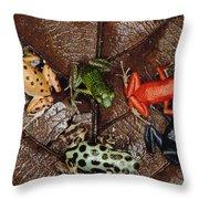 Strawberry Poison Dart Frog Dendrobates Throw Pillow