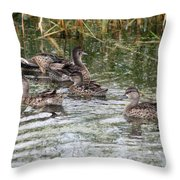 Teal Ducks Throw Pillow