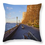 View From Battery Park City Throw Pillow