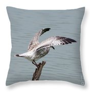 Wing Test Throw Pillow