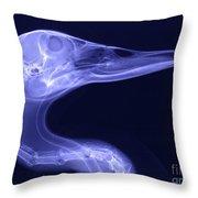 X-ray Of A Mallard Duck Head Throw Pillow