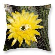 Yellow Cactus Flower Throw Pillow