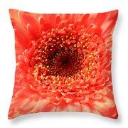 3026 Throw Pillow