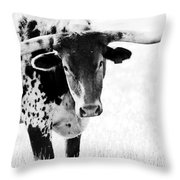 3255 Throw Pillow