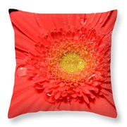 3263 Throw Pillow