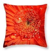 3302-001 Throw Pillow