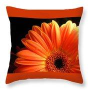 3347-003 Throw Pillow