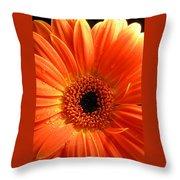 3347-004 Throw Pillow