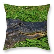 34- Flower Gator Throw Pillow