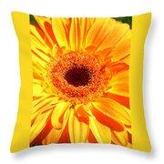 3410-005 Throw Pillow
