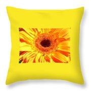 3410-008 Throw Pillow