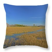 35- Grassy Waters Throw Pillow