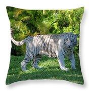 35- White Bengal Tiger Throw Pillow