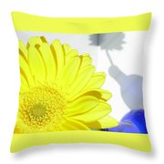 3764-001 Throw Pillow