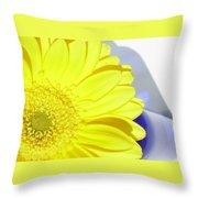 3767-002 Throw Pillow