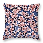 Methicillin-resistant Staphylococcus Throw Pillow