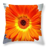 3941-001 Throw Pillow