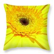 3957-001 Throw Pillow