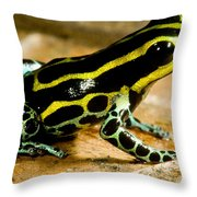 Amazonian Poison Frog Throw Pillow