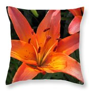 Asiatic Lily Named Gran Paradiso Throw Pillow