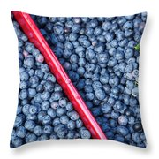 Blueberry Harvest Throw Pillow