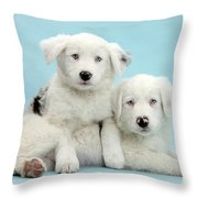 Border Collie Puppies Throw Pillow
