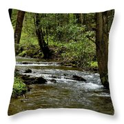 Craig Run Monongahela National Forest Throw Pillow