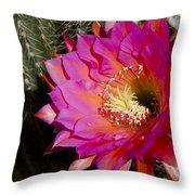 Dark Pink Cactus Flower Throw Pillow