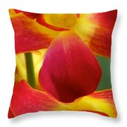 Dendribium Malone Or Hope Orchid Flower Throw Pillow
