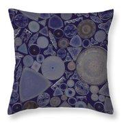 Diatoms Throw Pillow by M. I. Walker