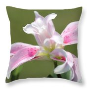 Double Oriental Lily Named Magic Star Throw Pillow