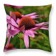 Eastern Purple Coneflower Throw Pillow