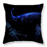 Firefly Squid Throw Pillow