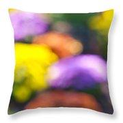 Flower Garden In Sunshine Throw Pillow