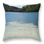 Freshwater Reef Throw Pillow