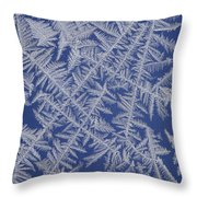 Frost On A Window Throw Pillow